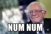 #bernienumnum meme by Marc James Léger, March 2016.