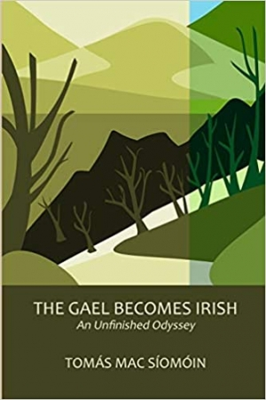 The Gael becomes Irish: the long-term consequences of colonisation